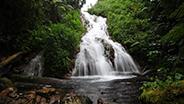 Small Rwanda waterfall