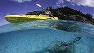 Snorkeling and kayaking around Seychelles coral reef